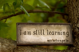 Michelangelo still learning Anne Davis 773